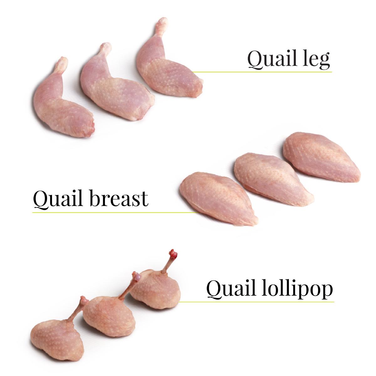 quail cuts urgasa quail usa